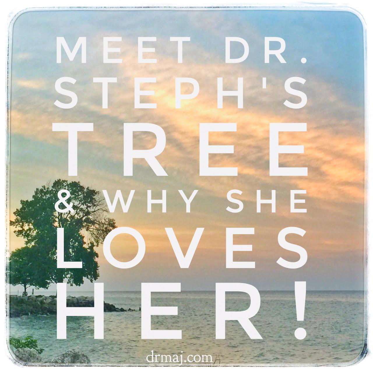 Dr-Stephs-Tree